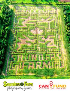 can_hund_maze